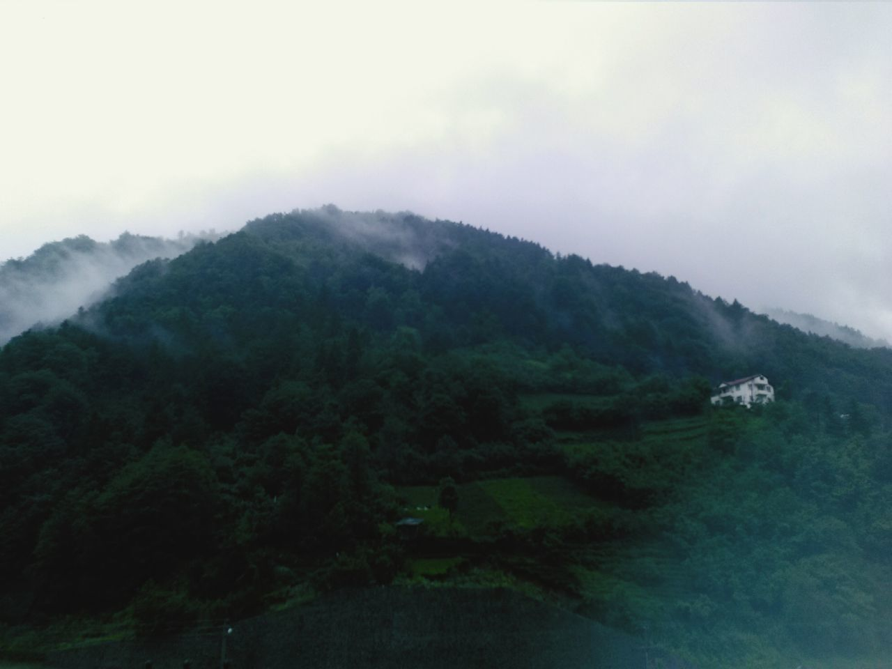 fog, mountain, landscape, mist, nature, tranquil scene, tree, foggy, tranquility, no people, scenics, beauty in nature, outdoors, sky, hazy, day