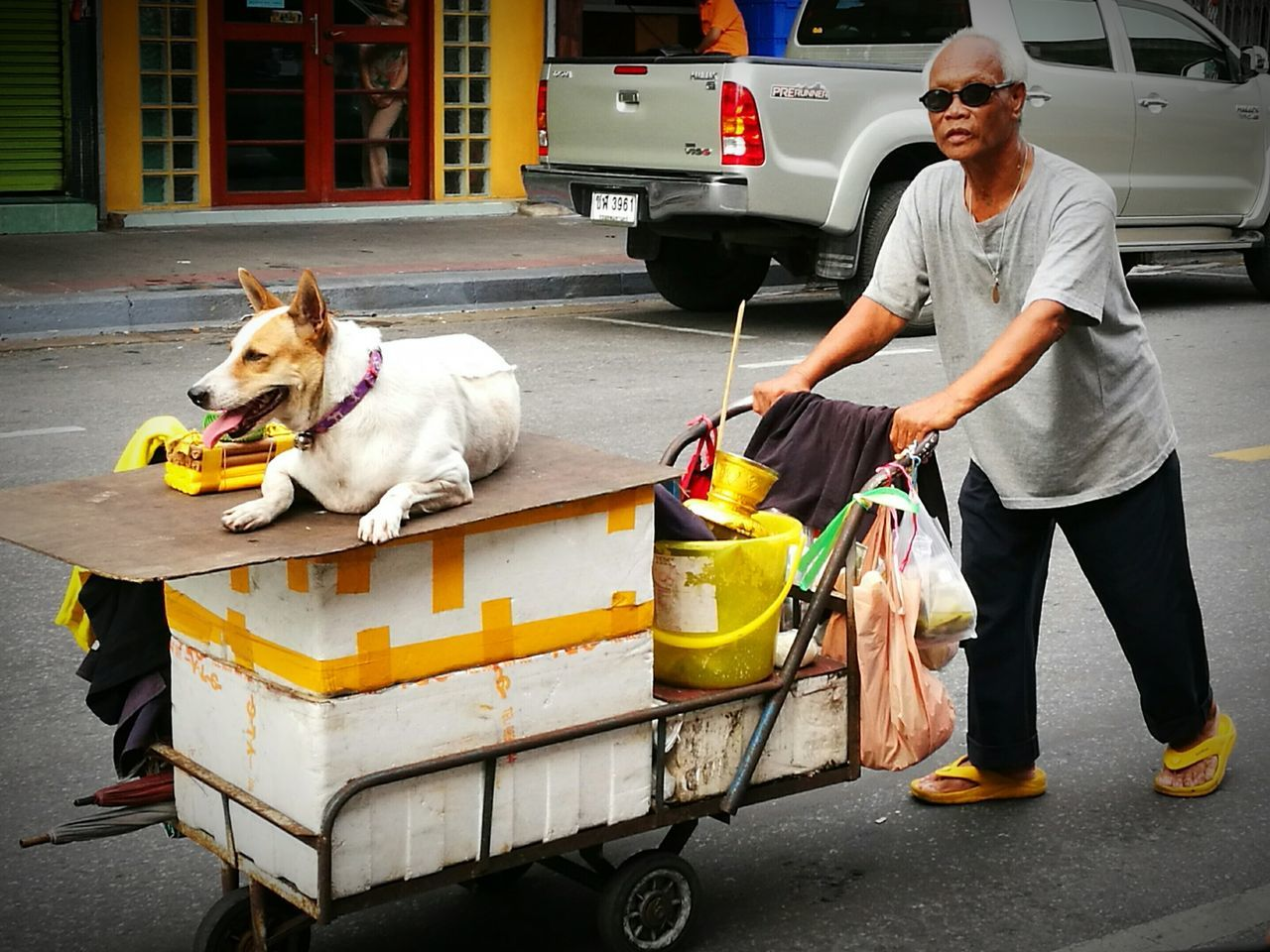 The man, the dog and his trolley Pet Owner Dog Pets Animal Domestic Animals Streetphotographer Street Photography Streetphotography City Life Street Bangkok Streetphotography Thailand Bangkok Colour Photography Color Photography Eyeemphotography EyeEm Gallery EyeEmBestPics EyeEm Best Shots EyeEm Traveling Home For The Holidays