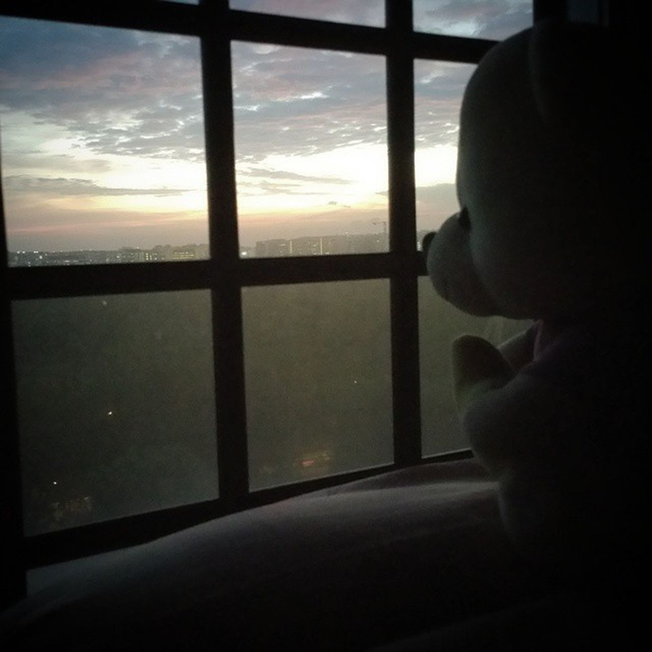 """ This is the last time , that I'm ever gonna come here again . "" - angels & devils //dishwalla ? Feat. : @lorainee24 's bear . Thisarguementisstillinvalid Bear Sunset Window"
