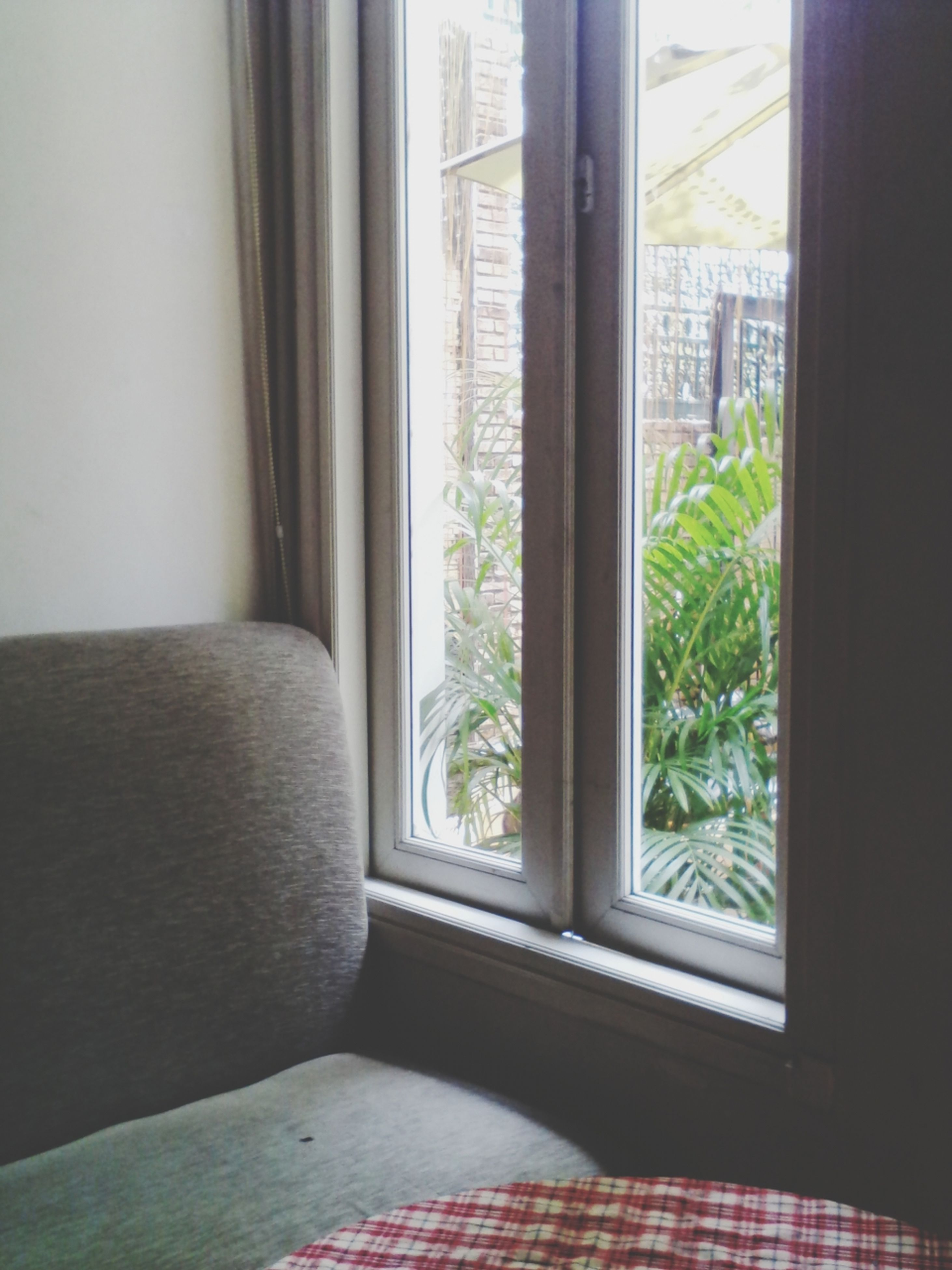 indoors, window, home interior, glass - material, transparent, curtain, architecture, built structure, house, window sill, door, sunlight, day, domestic room, absence, potted plant, no people, open, closed, flooring