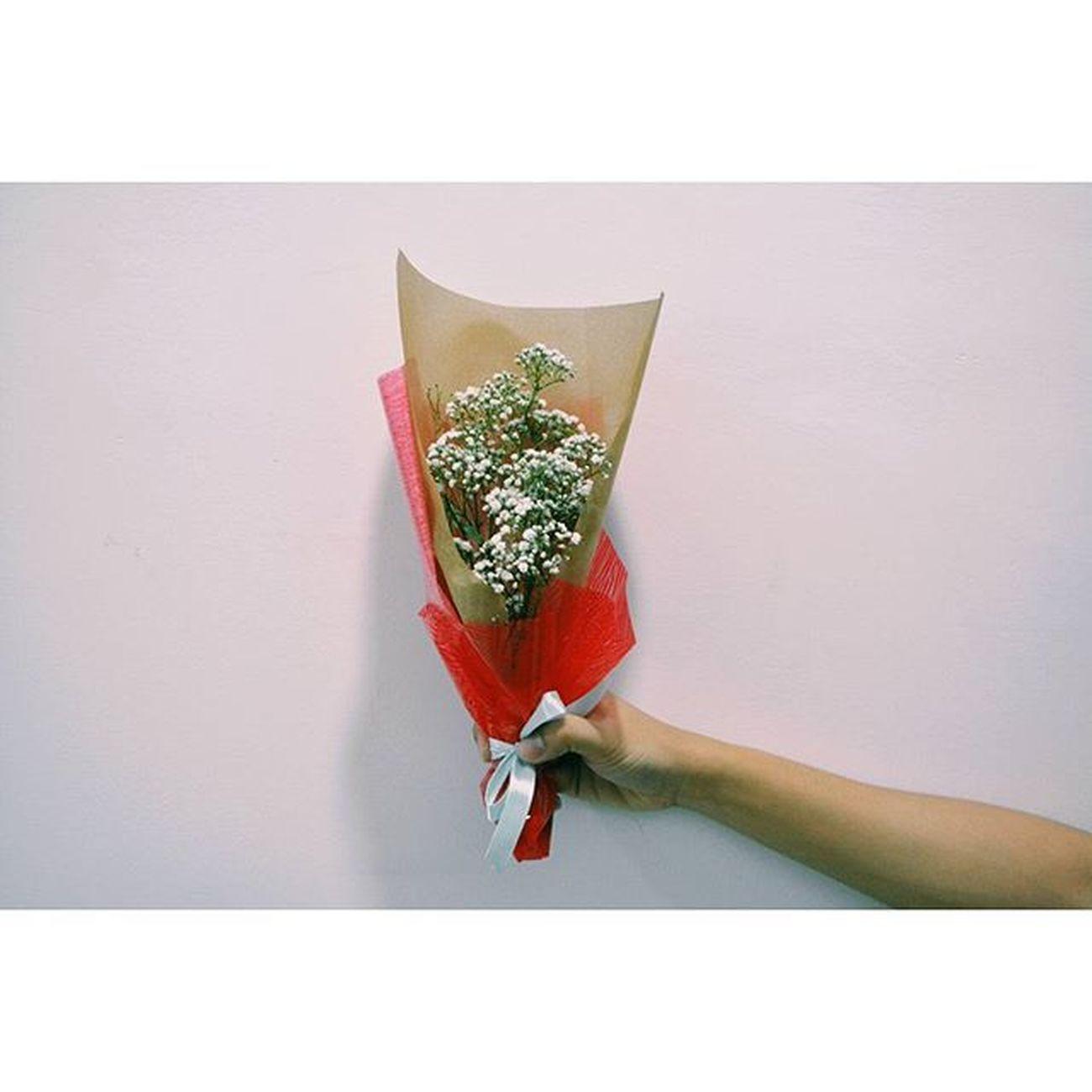 A little bouquet of baby's-breath for the speacial you. Happy Valentine's Day.💜 140216 Sunday Photography Nikon DSLR D5200 Lenovo Portrait Instagram Instapost Instalike Instadaily VSCO Vscofile Vscocam Myalbum