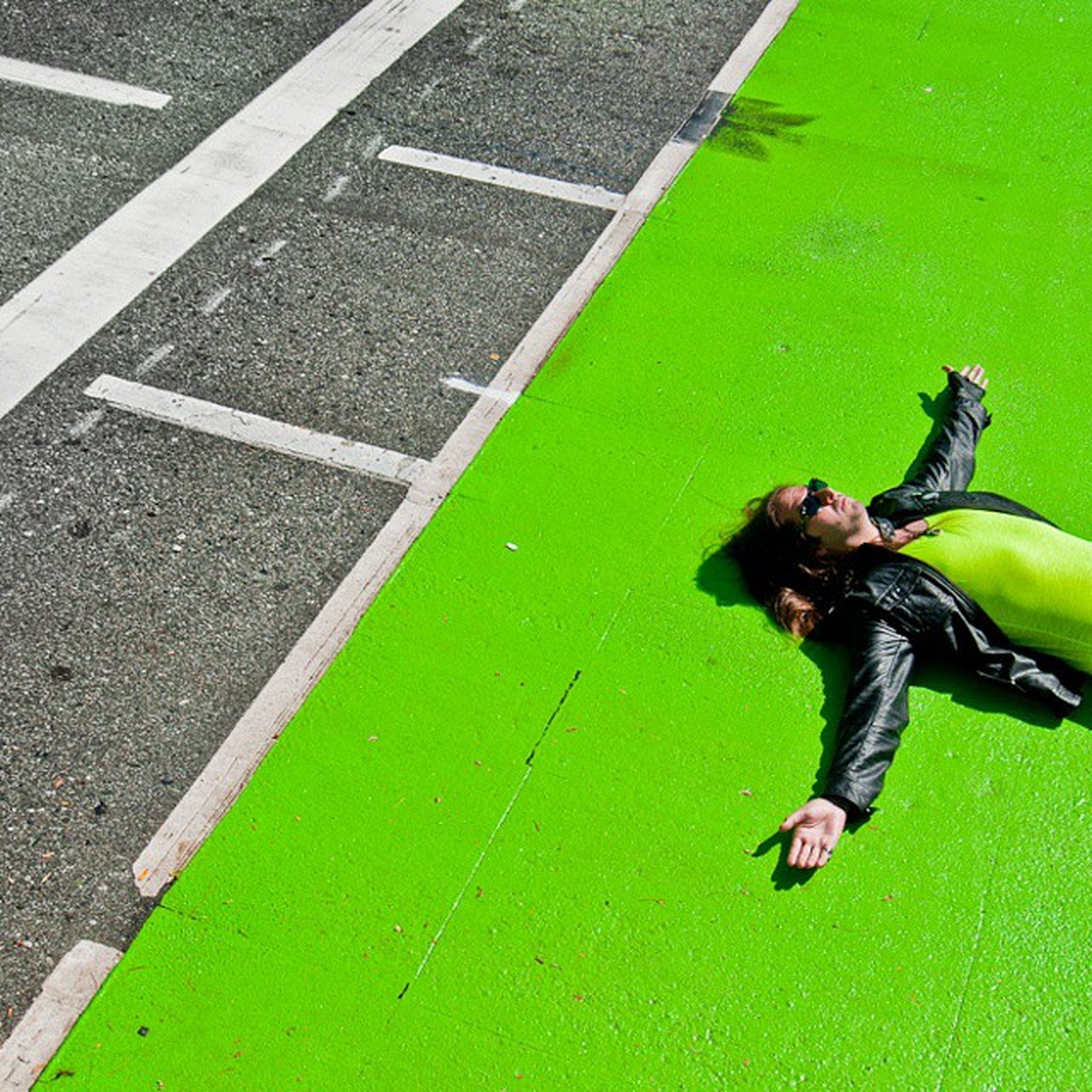 animal themes, street, high angle view, one animal, full length, human representation, green color, grass, dog, day, road, outdoors, road marking, wildlife, shadow, asphalt, sunlight, animals in the wild, statue