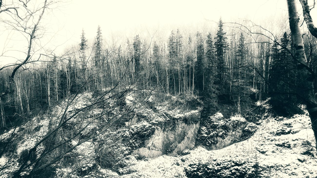 Thunderbird Falls, AK Forest Black & White Black And White Alaska Trees Snow Forest Photography Snowy Forest Canyon Canyons Cliff Nature Photography Nature
