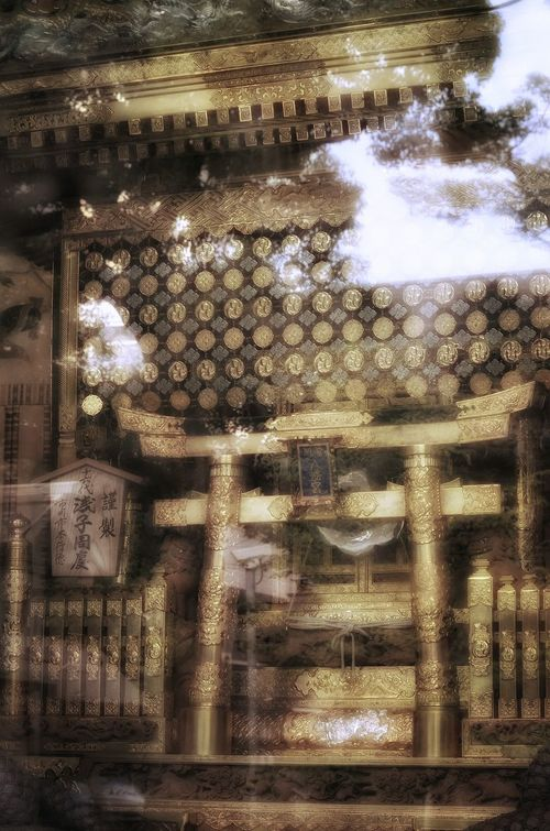 東京十社めぐり 富岡八幡宮 御神輿(Omikoshi) Japanese Shrine Gold Golden Color Mikoshi Tokyo Walking Around Snapshot Reflection Light And Shadow Japanese Culture EyeEm Best Edits