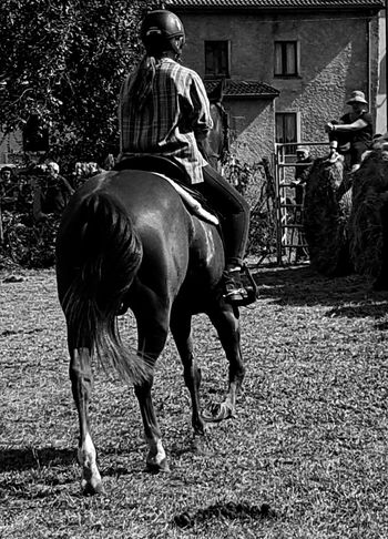 Blackandwhite Building Exterior Carousel Horse Day Domestic Animals Full Length Helmet Horse Horseback Riding Livestock Mammal One Animal Outdoors People Real People Riding Country Country Life Cellphone Photography Enjoying Life Horses Taking Photos Countryfair