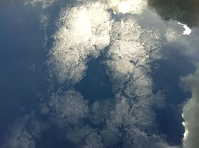 cloud bouquet in the sky Beauty In Nature Bouquet Of Flowers Cloud And Sunshine Cloud_collection  Cloud Formations Cloud Porn Clouds And Sky Cloudy Day Cloudy Sky Cold Temperature Day Nature No People Sky