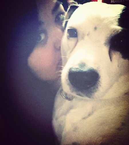 Can't get enough. My puppy-boy.♥ Dog Dog Love My Old Dog Ten Years