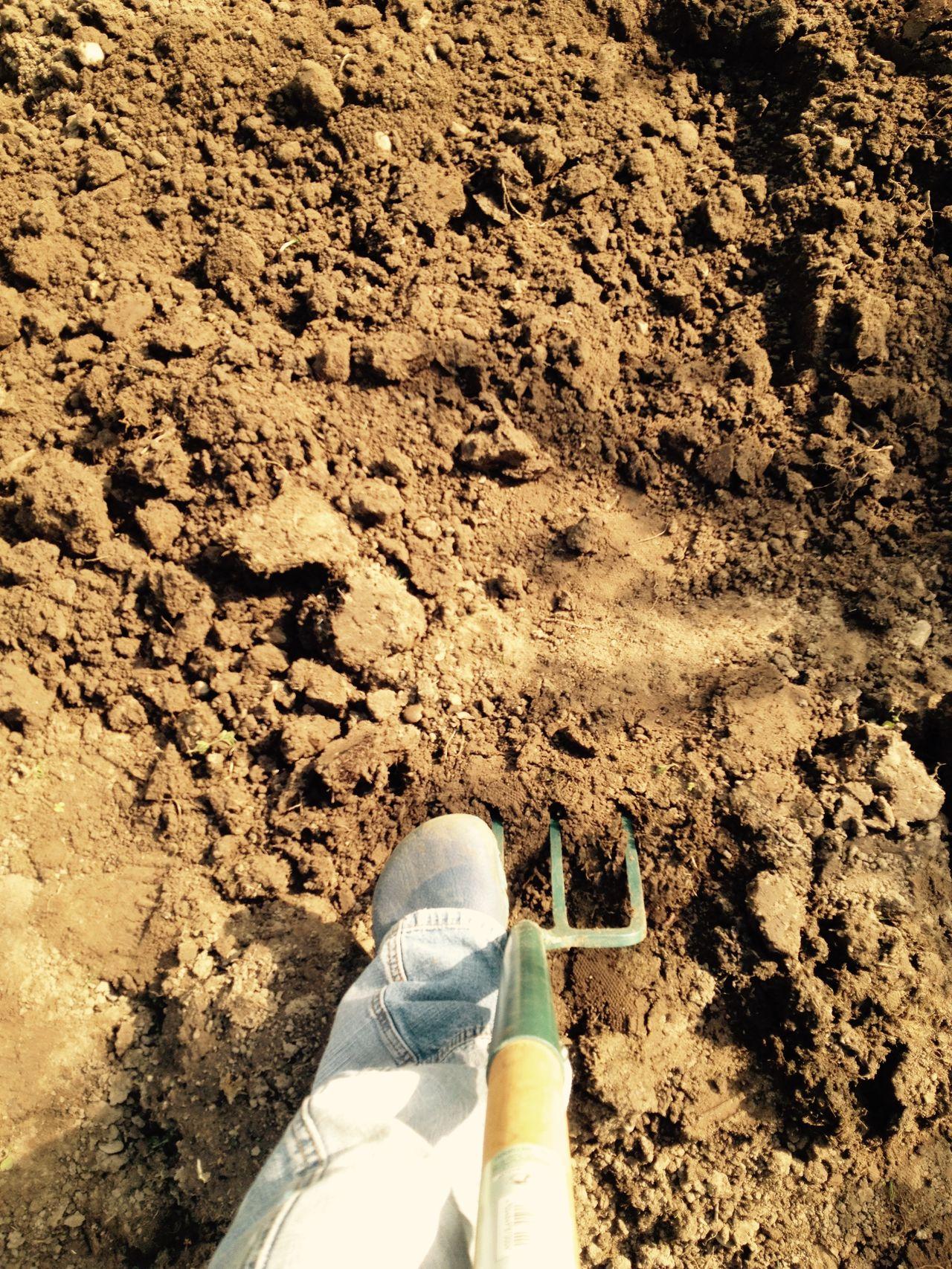 Beautiful stock photos of tools, Day, Digging, Dirt, Gardening