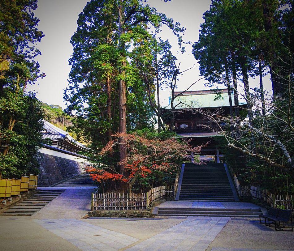 円覚寺 山門 北鎌倉 Kamakura Relaxing 寺社仏閣