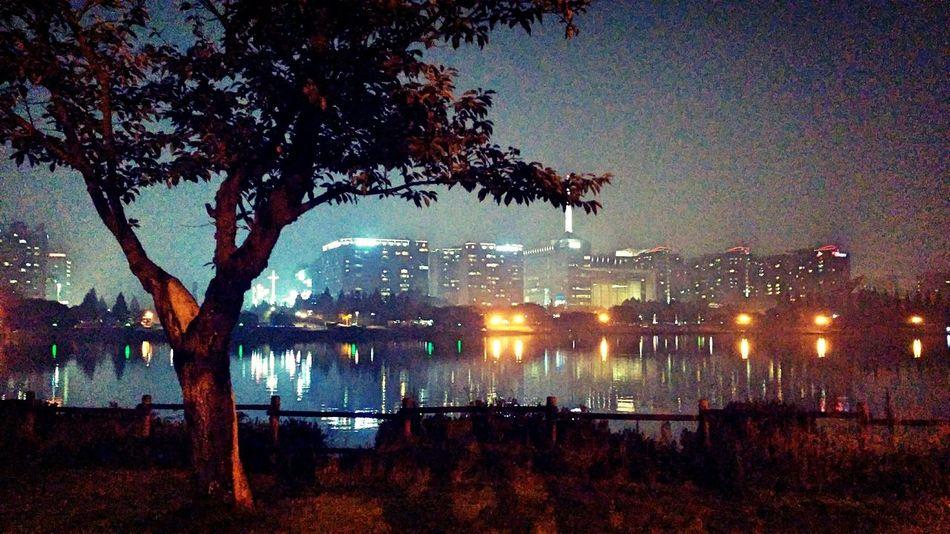 호수공원 일산 Night View Park