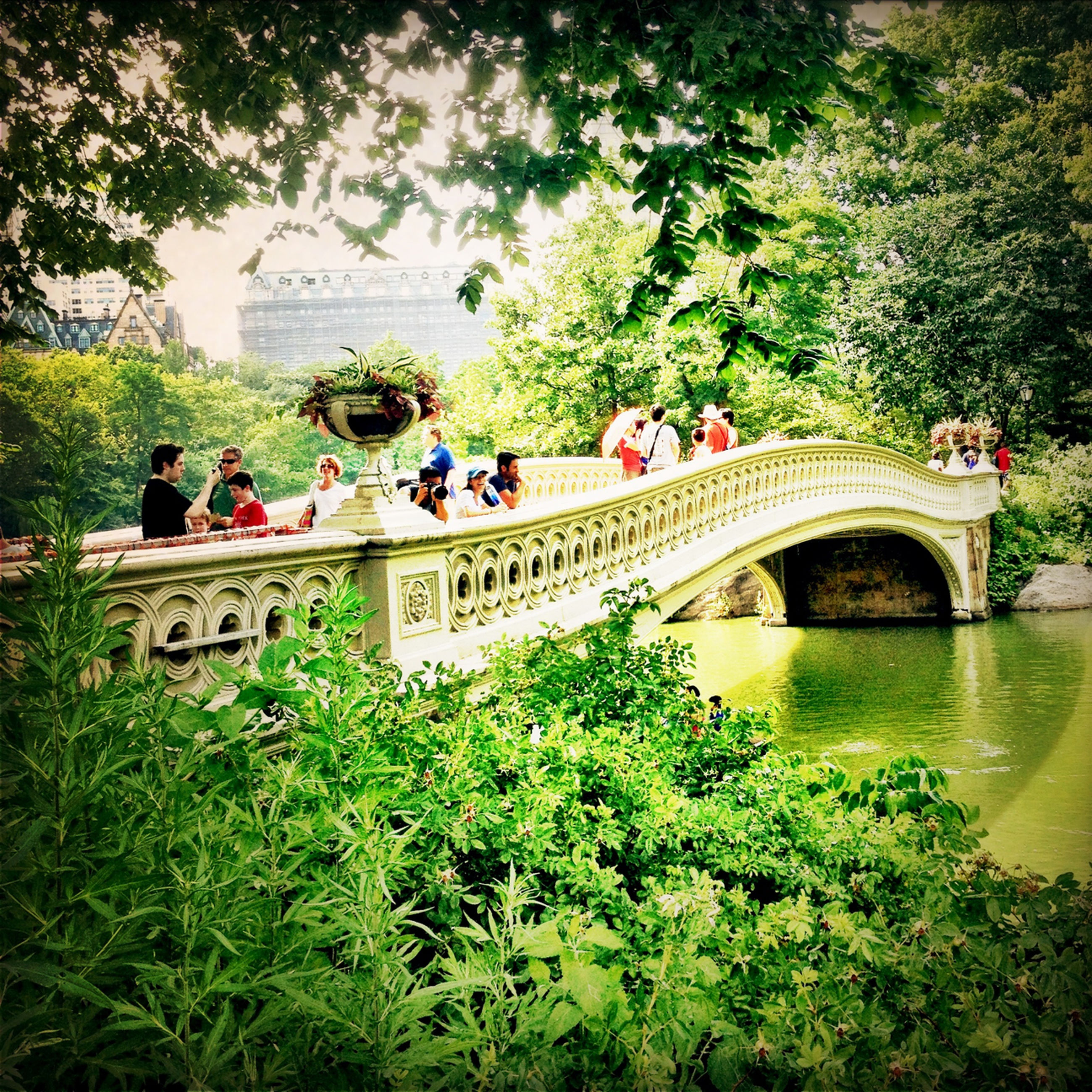 tree, architecture, built structure, lifestyles, large group of people, men, leisure activity, person, bridge - man made structure, connection, water, tourist, arch, green color, river, growth, transportation, travel, tourism