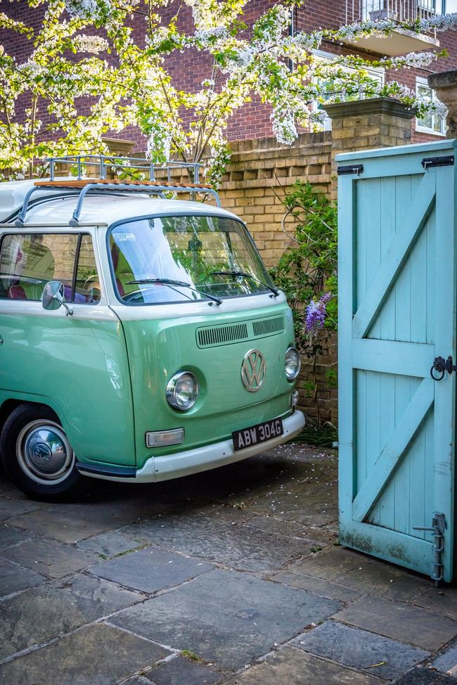 Blue Day Green Color Growth In Bloom Mint Colored Mintgreen No People Old Outdoors Parked Parking Plant Spring Spring 2016 Stationary Van Volswagen Yard