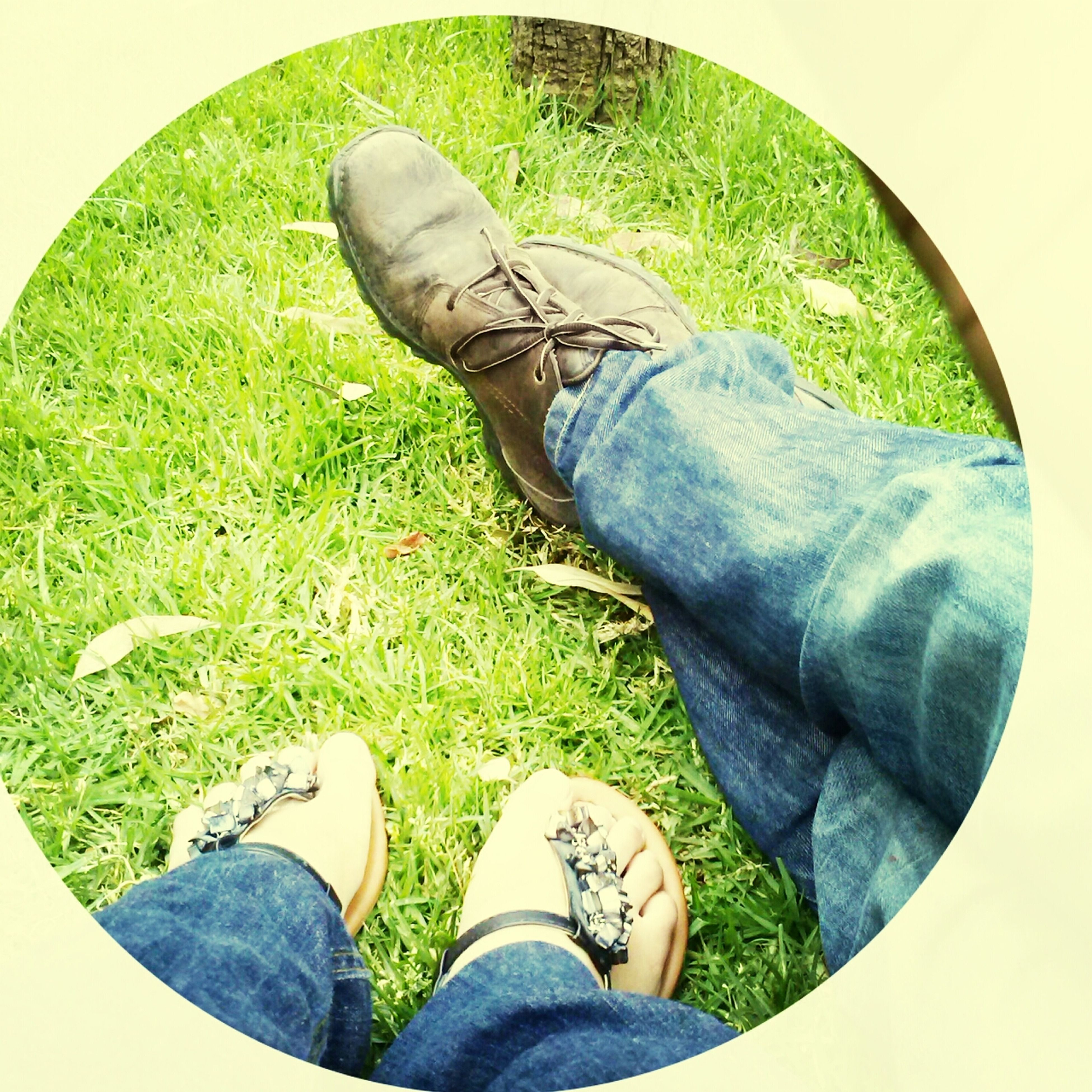 low section, person, shoe, personal perspective, footwear, grass, jeans, human foot, standing, lifestyles, men, leisure activity, field, grassy, green color, high angle view, unrecognizable person