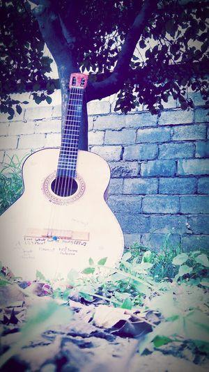 Mi vida, mi pequeña gordita*w* Playing Guitar Singer  Loveall