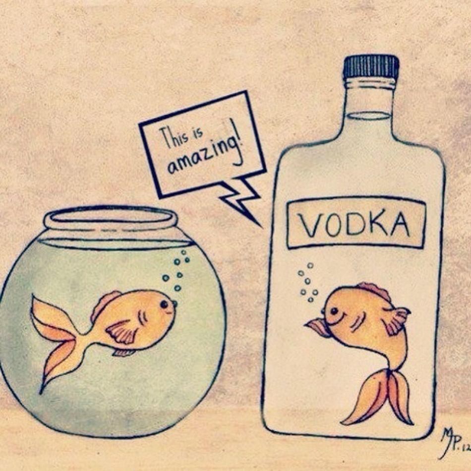 Drunk Like Yolo Vodka