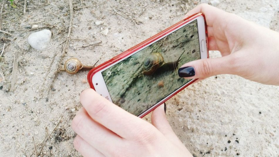 Human Hand Human Body Part Holding Outdoors Close-up Smartphone Photography Smartphonephotography EyeEm Vision PhonePhotography Phone Snail Snail🐌 Sand Technology Tech Manicures Samsung Macro Photography Taking Photos Taking Pictures Taking Photos Of People Taking Photos