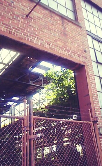 Trenton Nj Urban Decay My Quirky Style