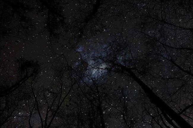 Sony SonyNEX5n Nightphotography Stars DSLR Photo Photoshop Hmtp