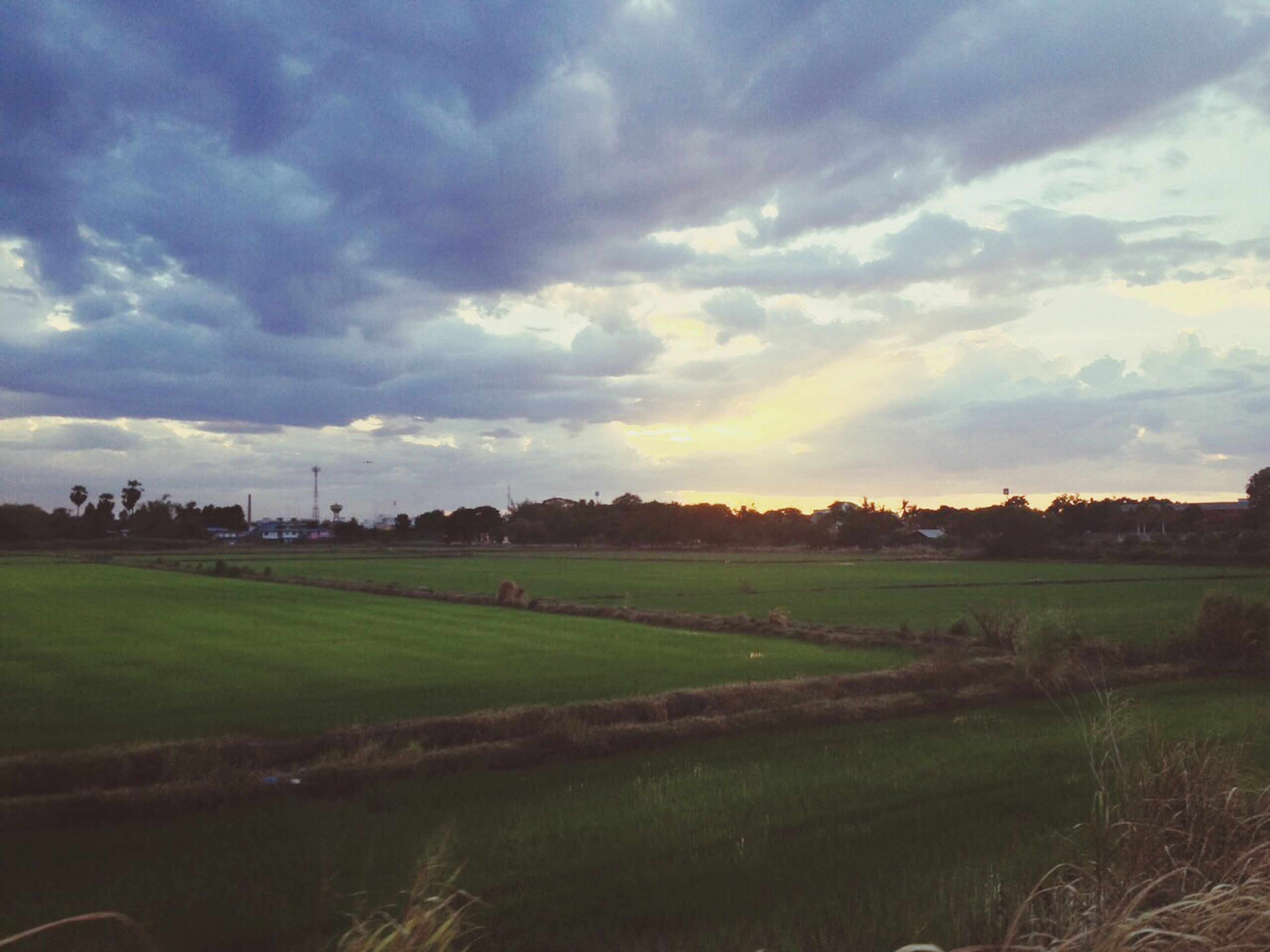 sky, field, landscape, cloud - sky, tranquil scene, tranquility, scenics, grass, beauty in nature, sunset, nature, water, cloudy, rural scene, cloud, idyllic, grassy, growth, river, no people