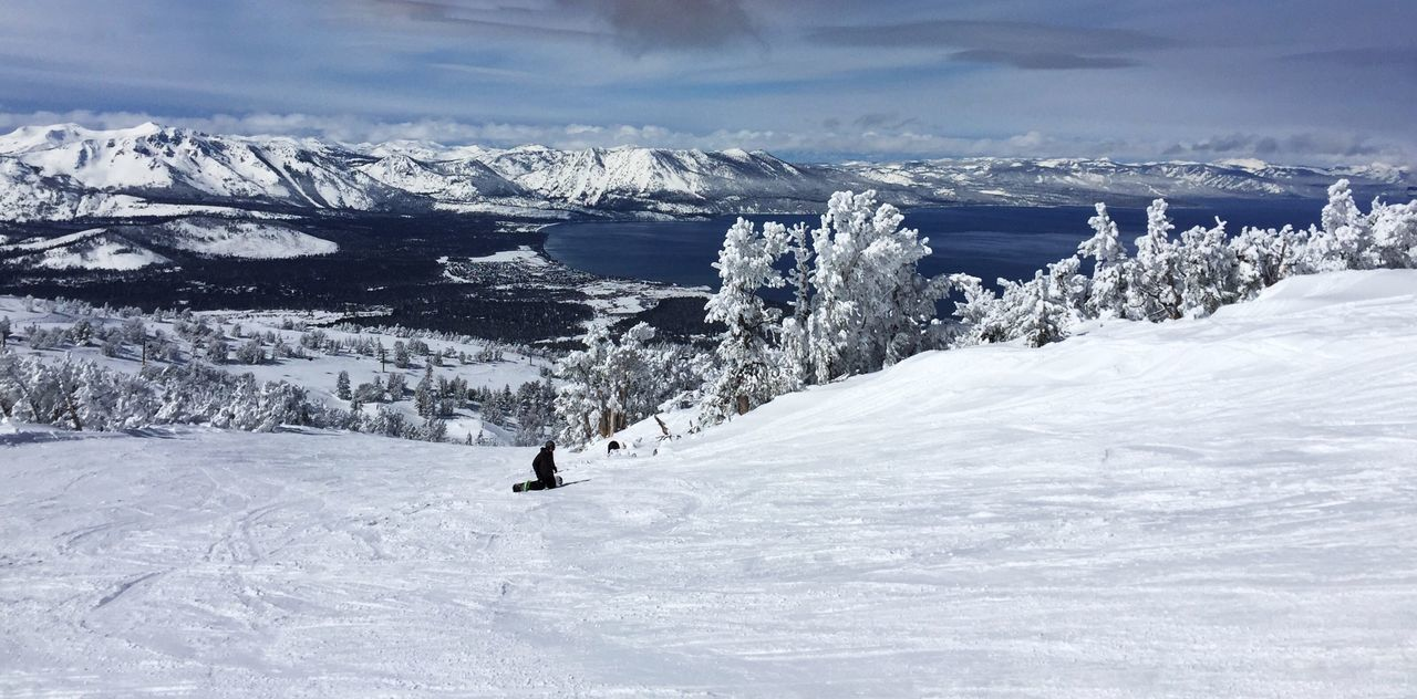 Winter Wonderland Heavenly Ski Resort Winter Snow Cold Temperature Weather Beauty In Nature Tranquil Scene Landscape Winter Tree Deep Snow California Mountains Lake Tahoe, Ca