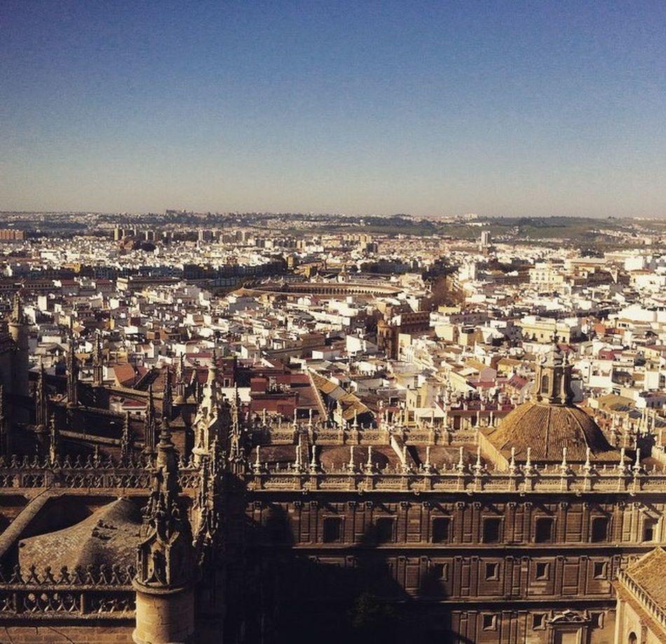 Sevilla Point Of View Cityexplorer España Sevillaarchitecture
