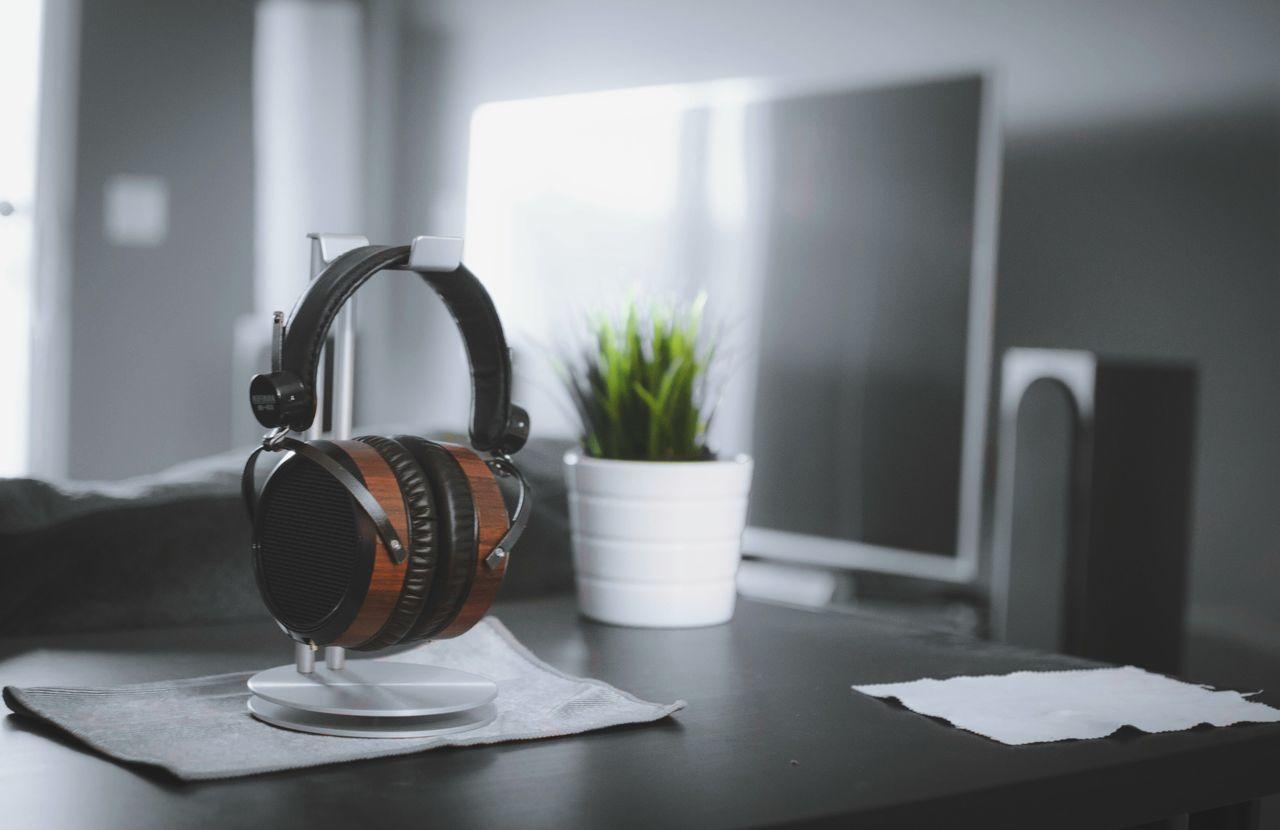 Love Hifiman HE - 400 Audiophile Audio Contemporary Technology Nature Headphones Hifiman Plant Livingroom Malelivingspace Love Hifiman Indoors  Audio Equipment Audio Headphone Stand Wood Vintage Headphones Vintage