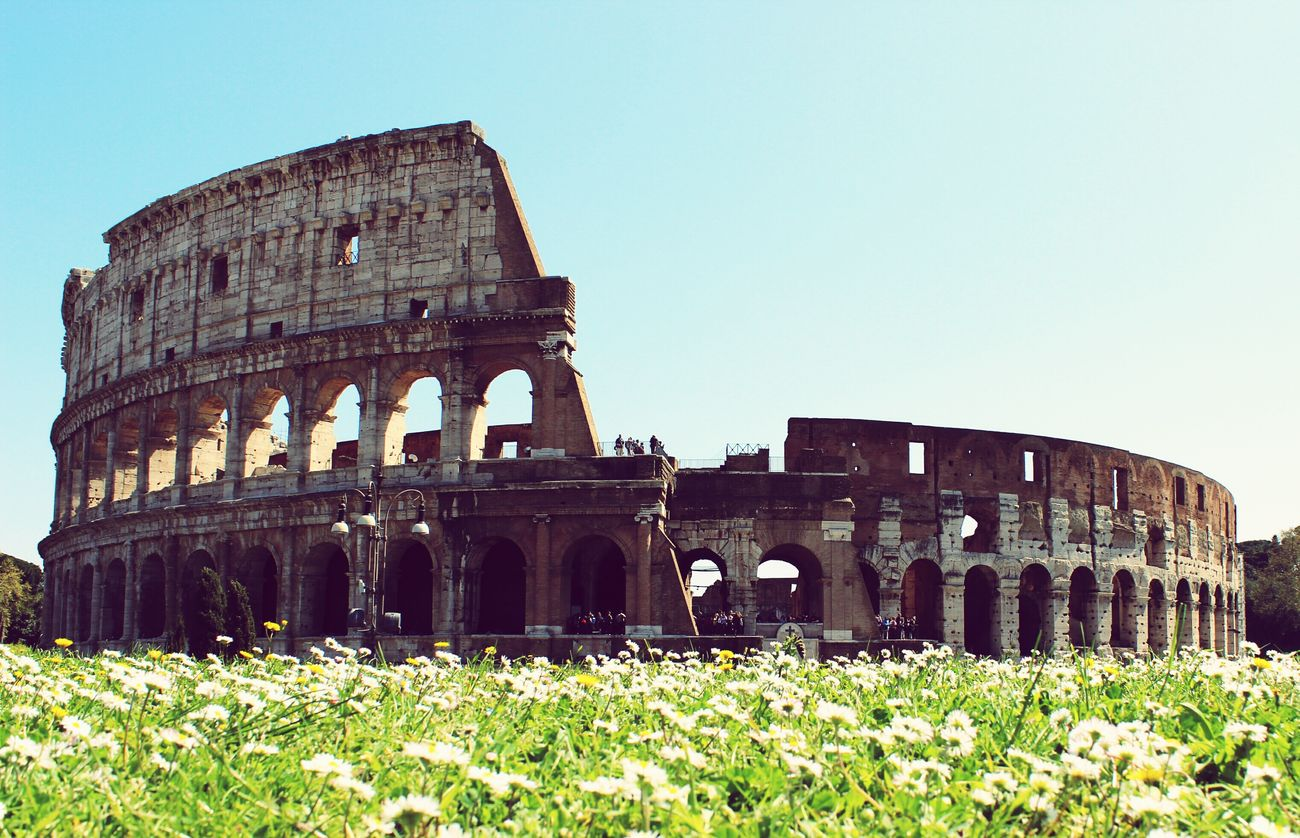 A travel in time 🌍 Rome Italy🇮🇹 Colosseo Colusseum architecture Old Ruin History Built Structure Grass Travel Destinations Building Exterior Outdoors Ancient Ancient Civilization No People Neighborhood Map Italy❤️ Italianlandscape Rome, Italy Historical Building Historical Monuments Historic City Historical Place