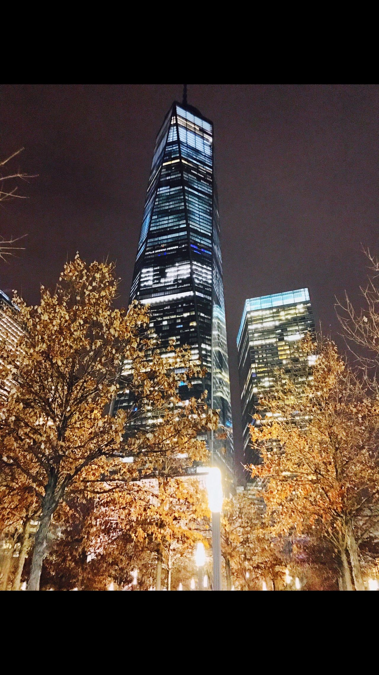 One World Trade Center World Trade Center New York City New York One World Trade Center Building Sky Scraper Downtown Financial District  Night Shot Night Cold Dream Winter December End Of The Year