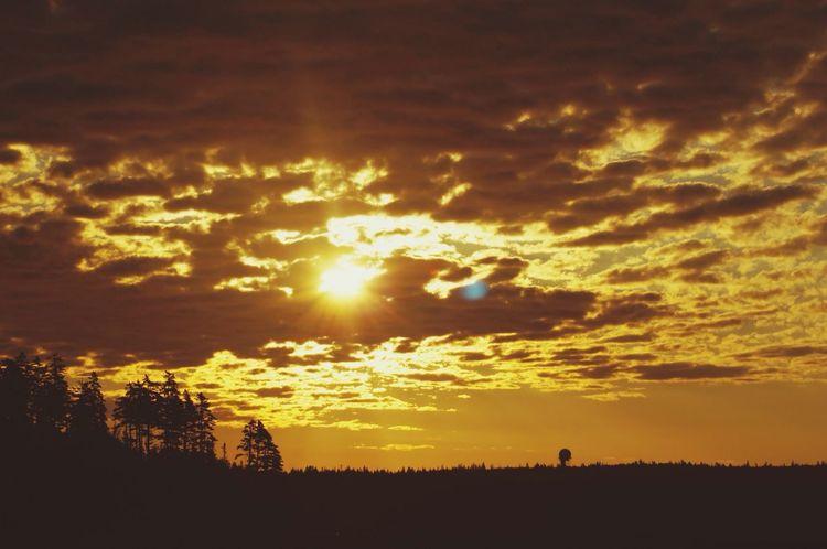 Sunset Nature Skyporn Landscape