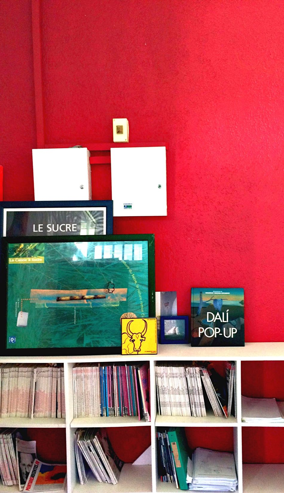 Everything In Its Place Red Wall Books Art Art Office Work Place Interior Views