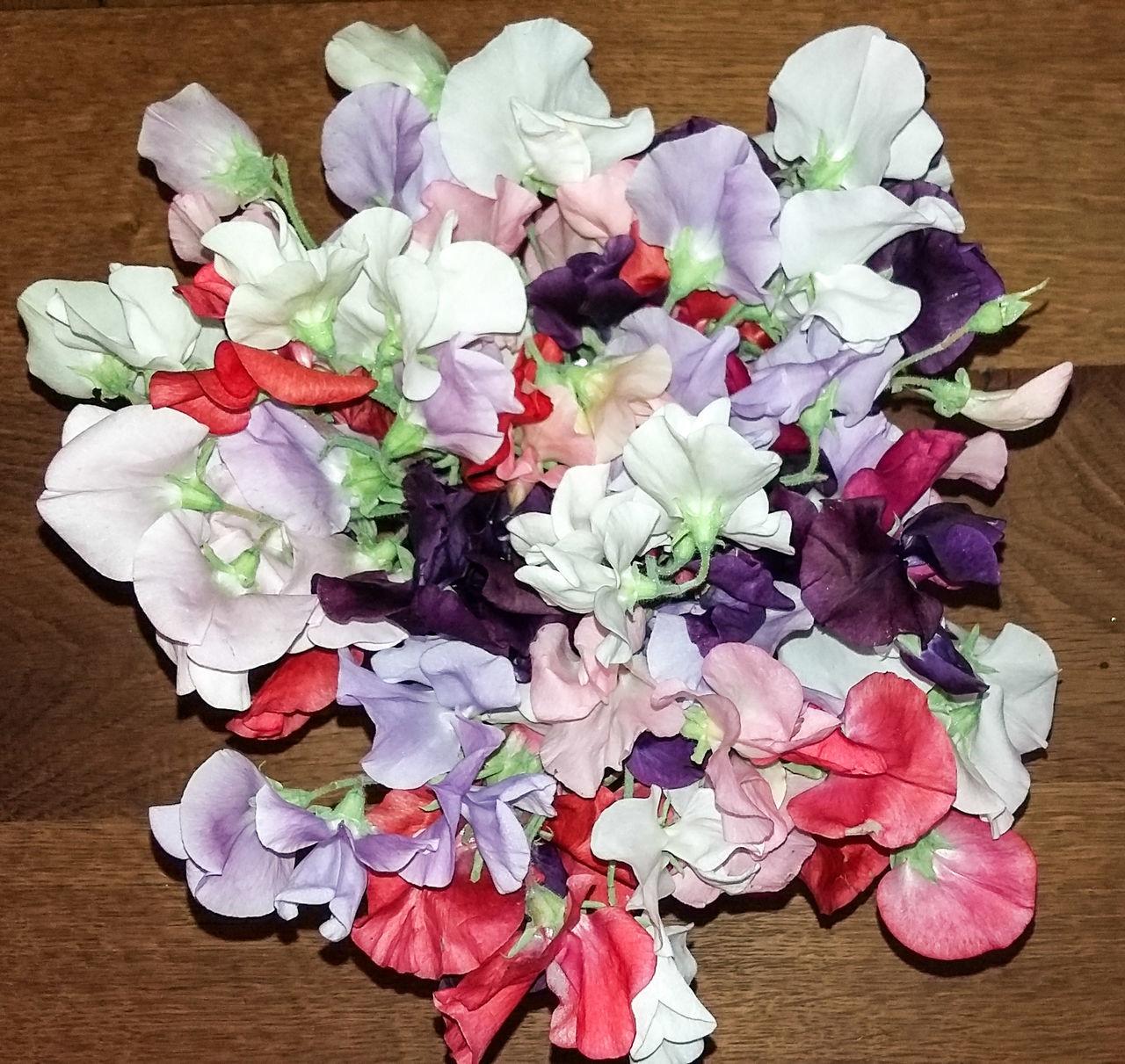 Birthday Flowers Blütenpracht Frühlingsstrauss Colorful Zarte Blüte Flowers MAI Blütenzauber Nofilter Good Times