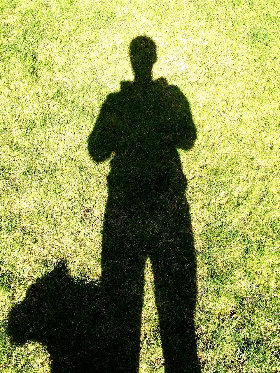 shadow, grass, sunlight, focus on shadow, standing, men, real people, one person, field, outdoors, holding, silhouette, day, green color, military, weapon, nature, tree, one man only, people