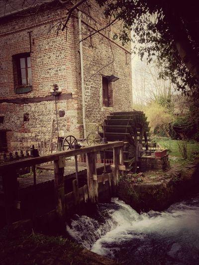 Le Moulin Des Aïeux