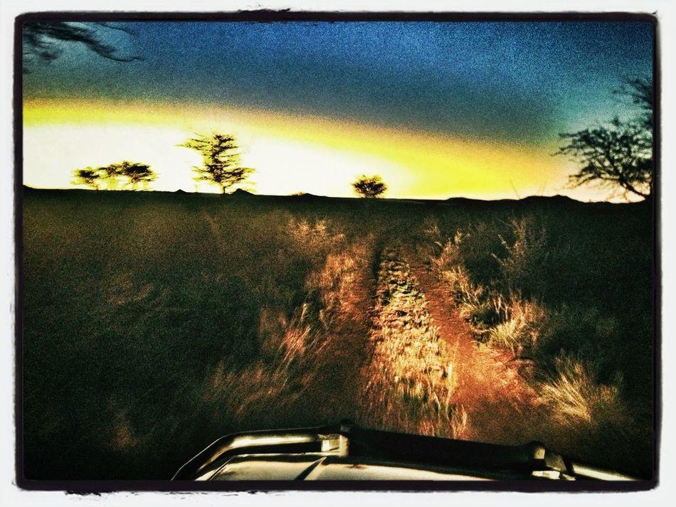 Driving Home Namwo13