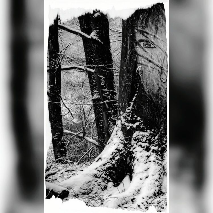 B/w Moody Different Escaping Strange Pixlr Down By The River Experiments In Double Exposure Pixlrdoubleexposure A Walk In The Woods Scary Places Itsjustme