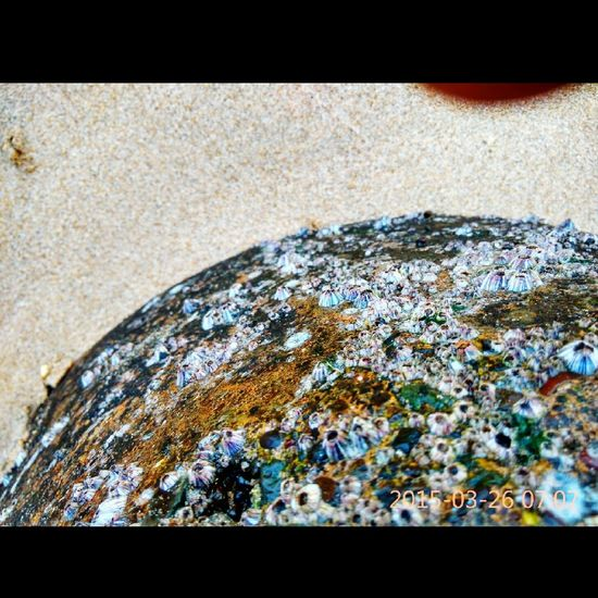 Beach Life Is A Beach Textures And Surfaces Rock