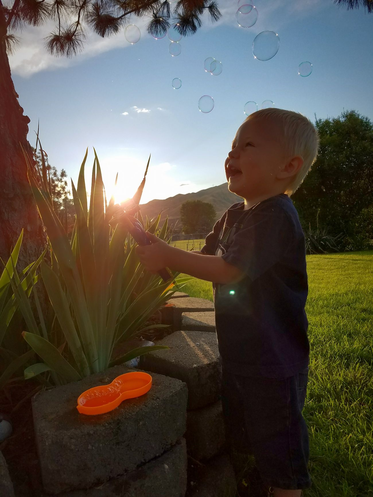 Childhood Outdoors Sky Nature Bubbles ♥ Summertime 🌞 Innocent Face Nephew Time  Simply Pleasures In Life To Be A Kid Again.. Sun Glare Cute Tree