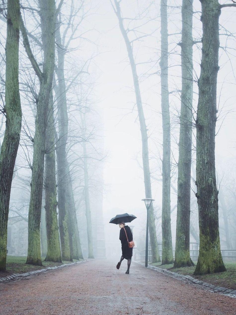 Fog Spring Street Photography Outdoors Long Goodbye
