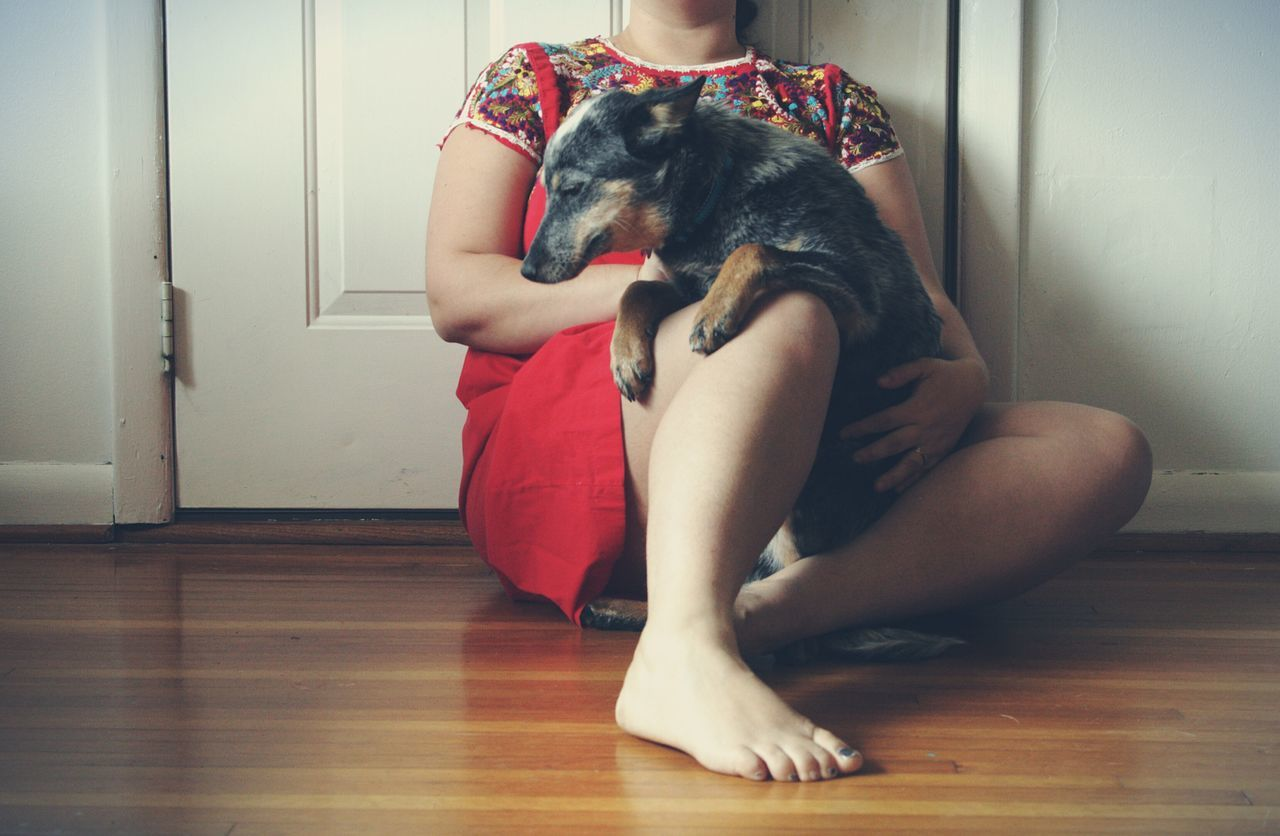 Depression - Sadness Hardwood Floor One Person Indoors  Full Length People One Woman Only Adult Sitting Adults Only Young Adult Only Women Home Interior One Young Woman Only Women Beauty Human Body Part Young Women Day Dog Blue Heeler Red Dress Self Portrait