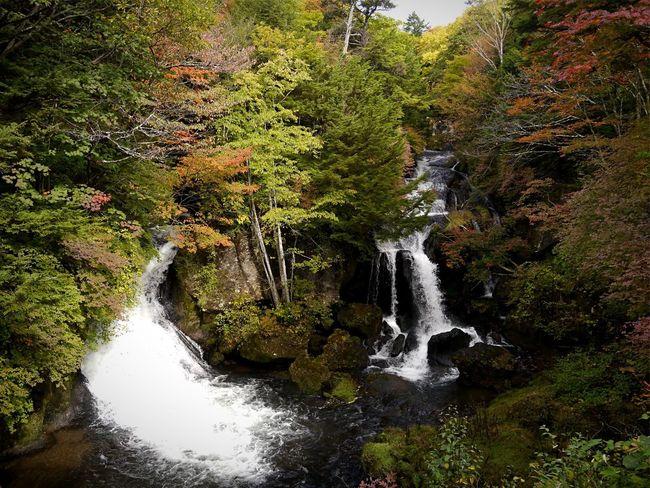 Ryuzu Fall Waterfall 竜頭の滝 Nikko,Japan Beauty In Nature Travel Destinations Autumn Colors Japan Scenery Snap EyeEm Nature Lover / Panasonic Lumix GX1 LUMIX G VARIO 14-45/F3.5-5.6 28mm handheld No Filter Cloudy Day October 10 2016
