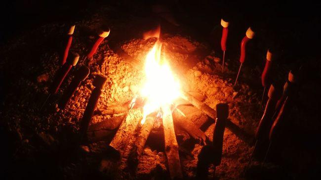 Night Night, Sleep Tight Dancing Fire Fire Bonfire🔥 Marshmallows Hotdogs Dancing Hotdogs