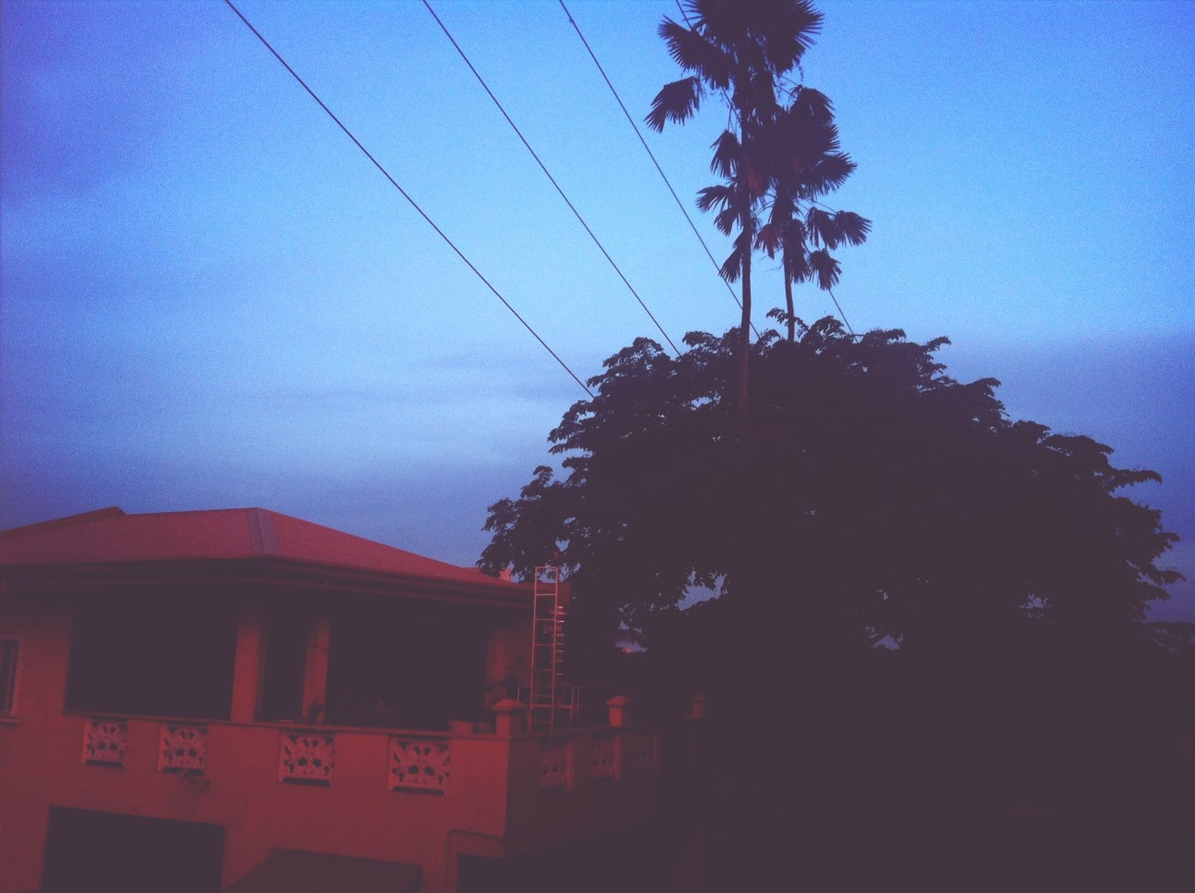 power line, electricity pylon, cable, low angle view, electricity, sky, power supply, tree, building exterior, silhouette, built structure, blue, architecture, power cable, connection, fuel and power generation, dusk, house, technology, outdoors