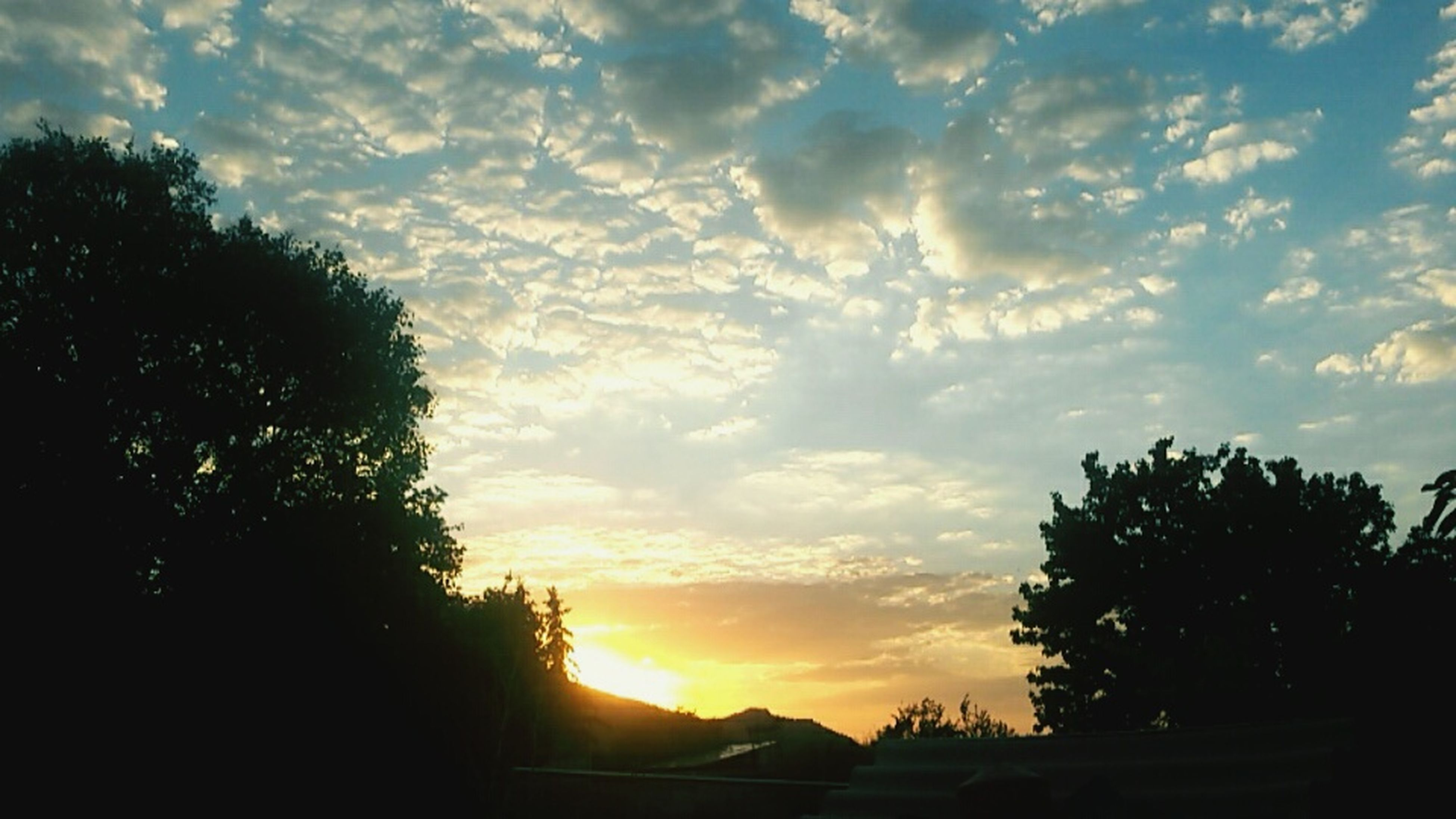 silhouette, sunset, sky, tree, beauty in nature, cloud - sky, scenics, tranquility, tranquil scene, nature, cloud, sun, sunlight, idyllic, orange color, cloudy, landscape, outdoors, sunbeam, no people, outline, dramatic sky, growth, dark, non-urban scene, non urban scene, majestic
