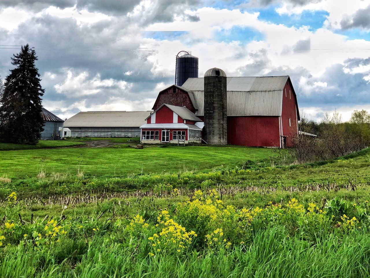 Built Structure Architecture Building Exterior Field Sky Cloud - Sky House Grass Day Rural Scene Barn No People Outdoors Country House Landscape Agriculture Growth Nature Plant Flower EyeEmNewHere BYOPaper! Barn Farm