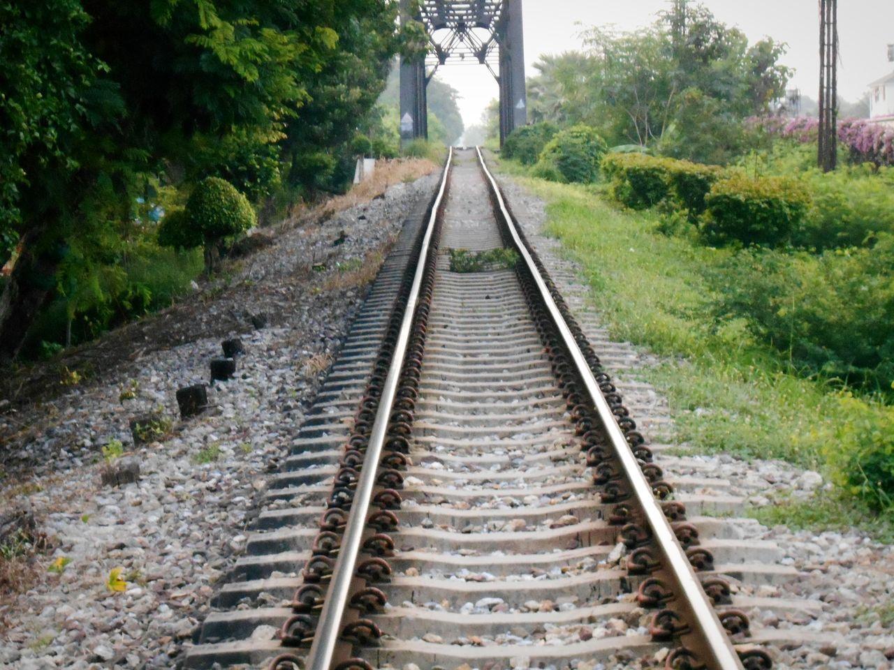 Railtrack:Bridge, Railroad Track Rail Transportation Tree Transportation No People .