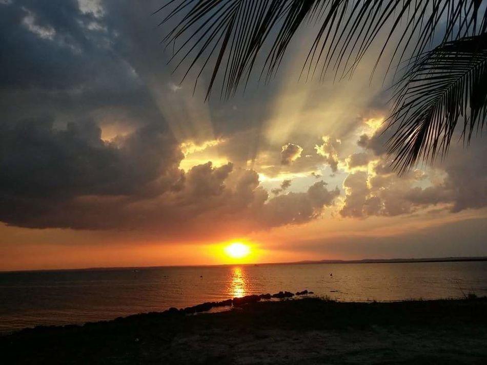 Sunny Sol Pordosol Hello World Multi Colored Palmas Palmasparapalmas Sunset #sun #clouds #skylovers #sky #nature #beautifulinnature #naturalbeauty #photography #landscape