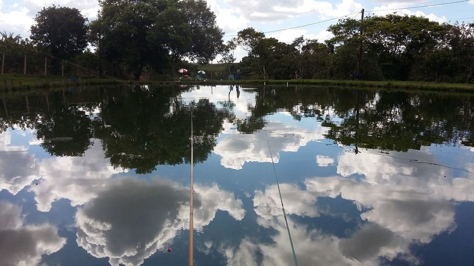 Pesqueiro do BT, cidade de Paulinia SP Reflection Water Tree Cloud - Sky Lake Nature Sky Outdoors Tranquility Symmetry Day No People Reflecting Pool Landscape Nautical Vessel Scenics Beauty In Nature First Eyeem Photo