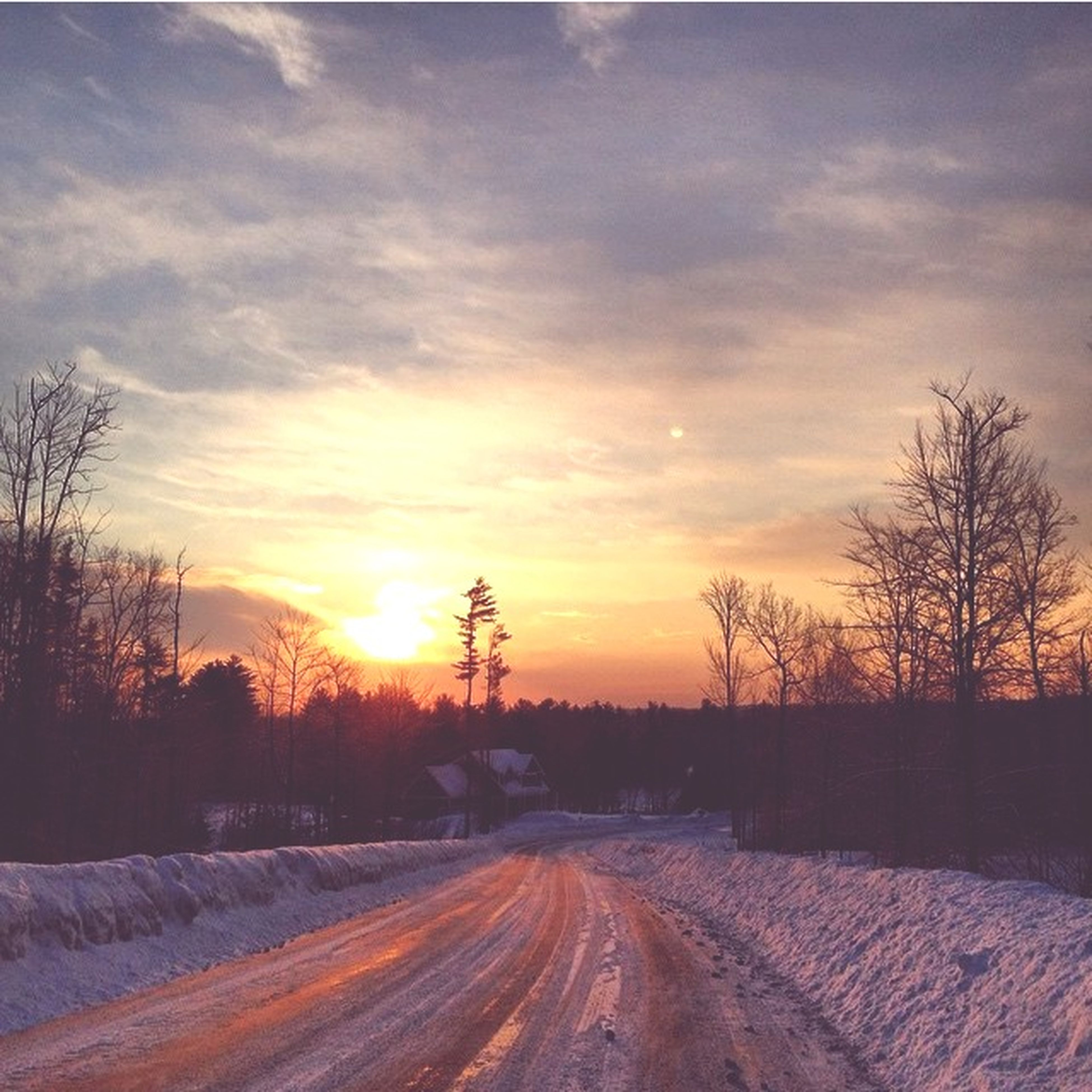 snow, winter, cold temperature, sunset, bare tree, sky, road, tree, the way forward, season, tranquil scene, tranquility, landscape, orange color, covering, beauty in nature, nature, scenics, weather, cloud - sky