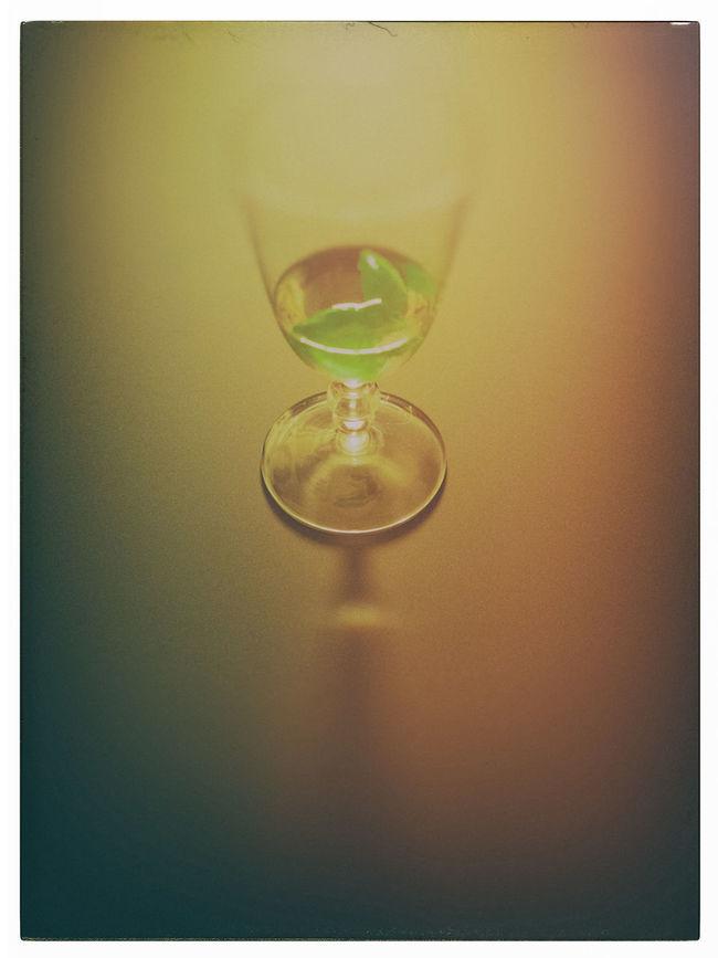 Zerreiß deine Pläne. Sei klug und halte dich an Wunder. Sie sind lang schon verzeichnet im großen Plan. Jage die Ängste fort und die Angst vor den Ängsten. (Mascha Kaléko) Basil Birthday Celebrate GIN Gin Basil Glass Have A Drink Reflection Selective Focus Vignette