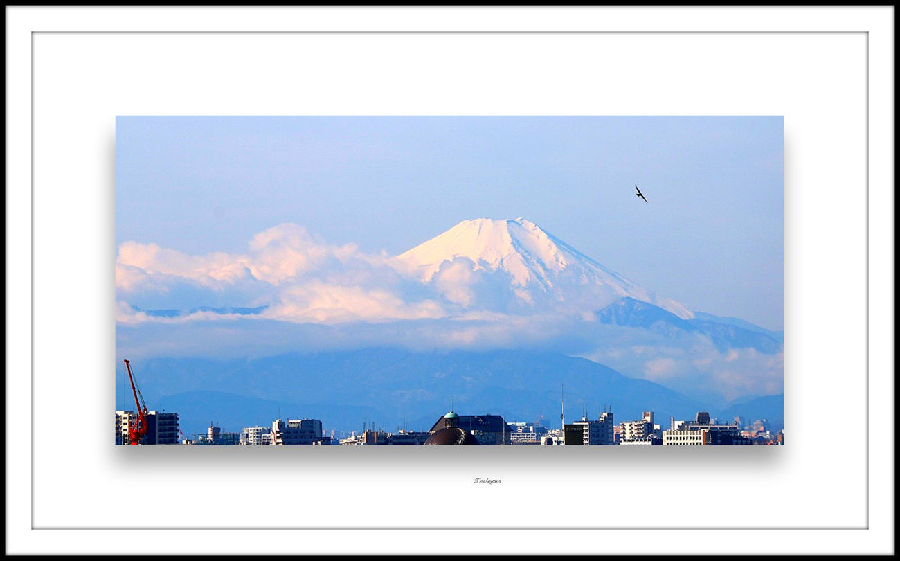 Mt. Fuji Fujimount Fuji Mountain Mount FuJi Mountain View Mountain_collection From My Point Of View From Hometown EyeEm Best Shots EyeEm Nature Lover